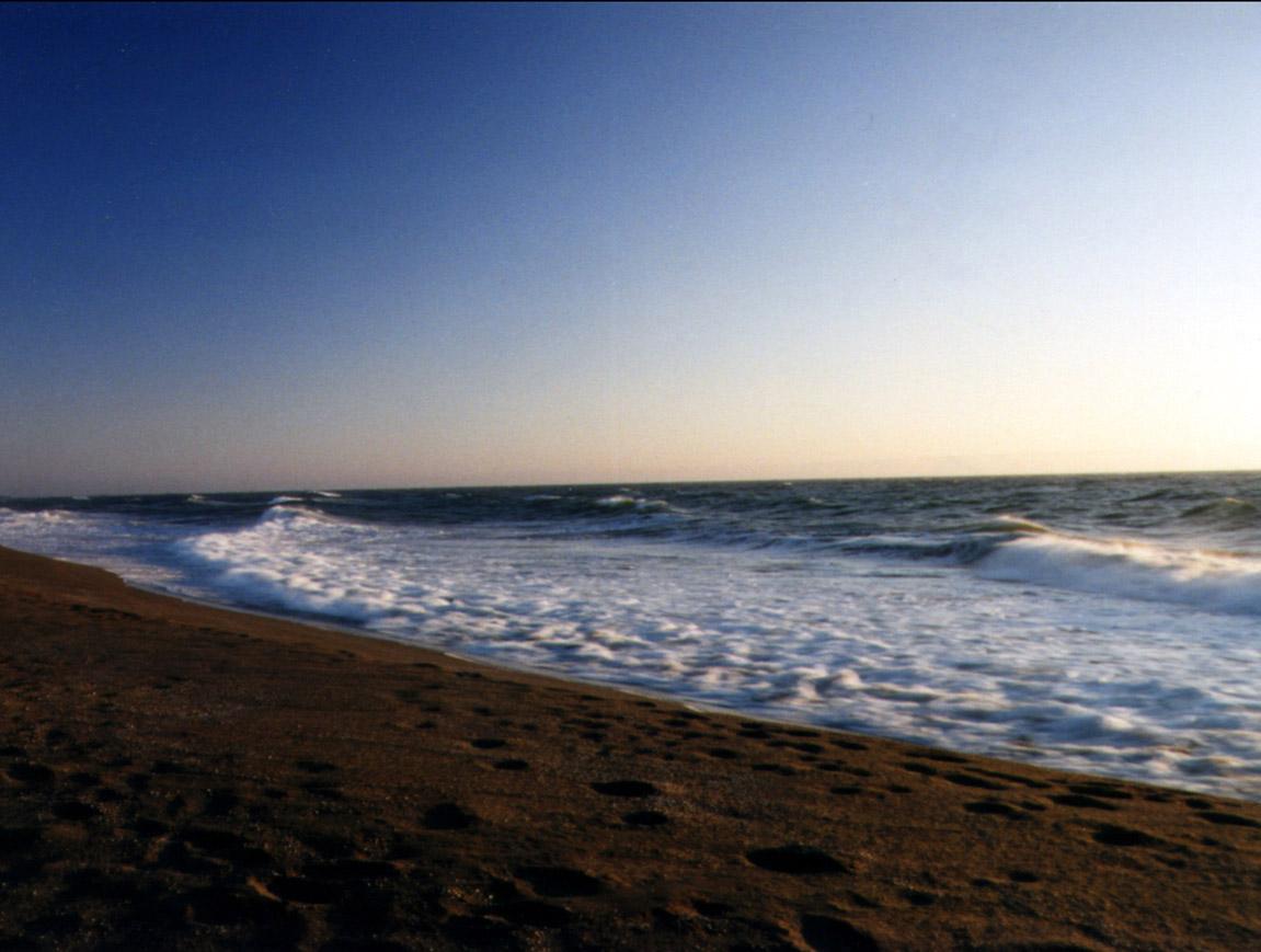beach near port orford jpg